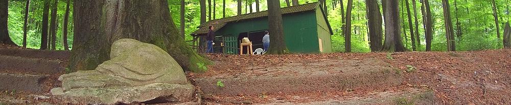 Unser Wald-Atelier