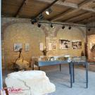 Remise im Sandsteinmuseum